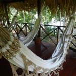 Expedição Amazônia com @Femingos