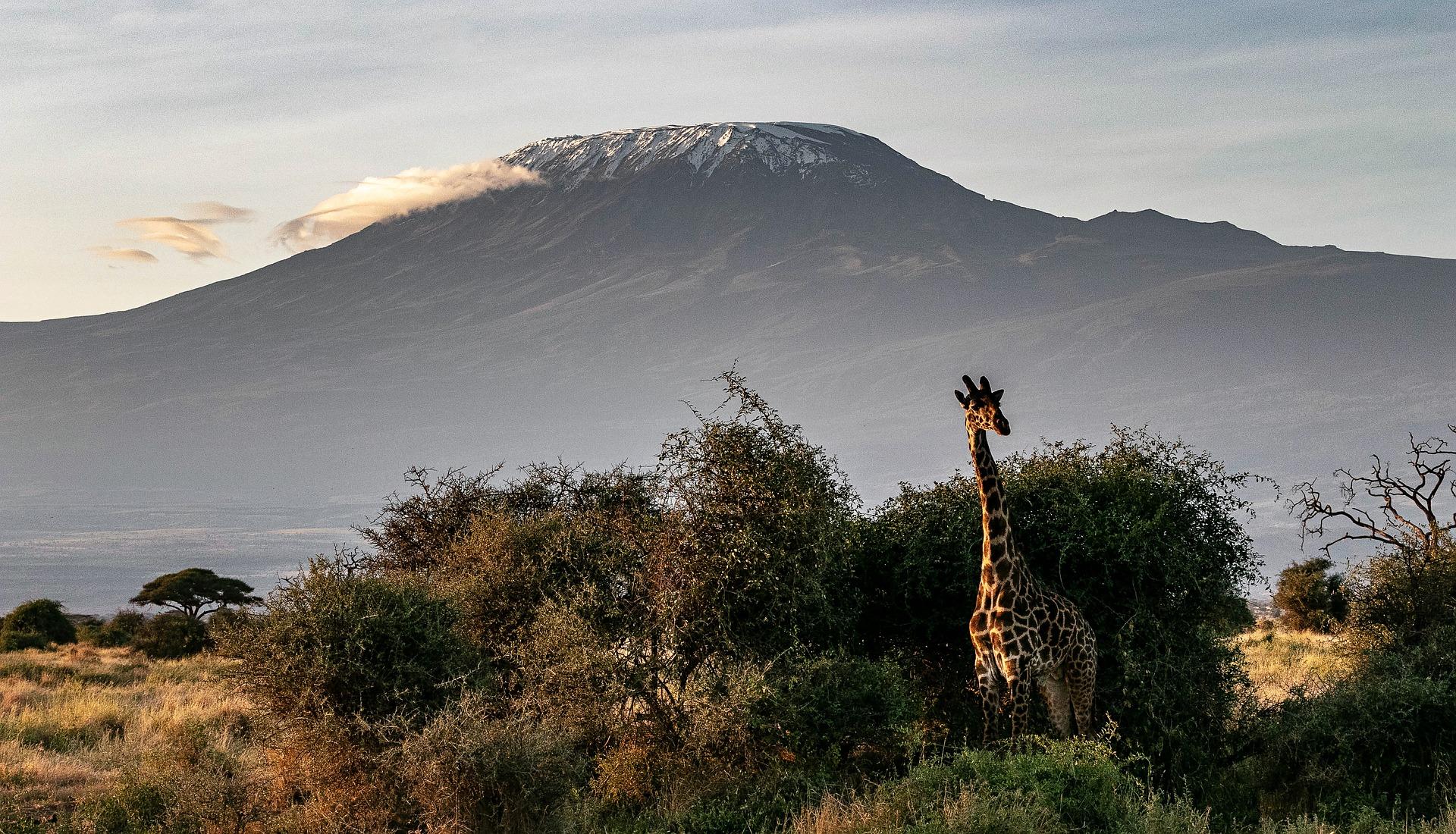 Esporte de aventura: Escalada ao Monte Kilimanjaro